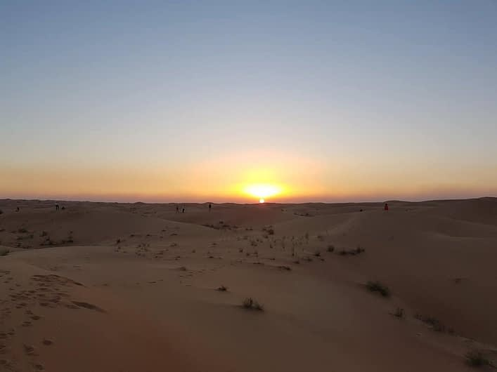 morning-desert-safari-tours