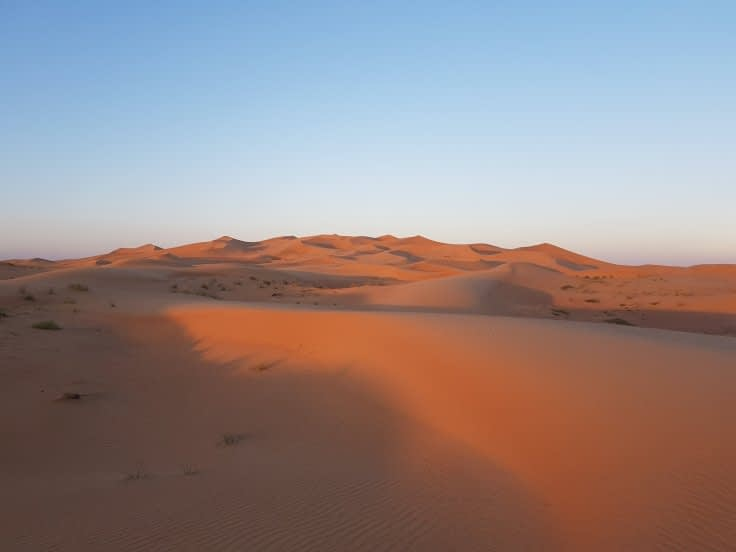 Evening Desert Safari Dubai with BBQ dinner and belly dance