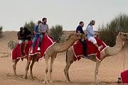 camel-riding-safari-dubai