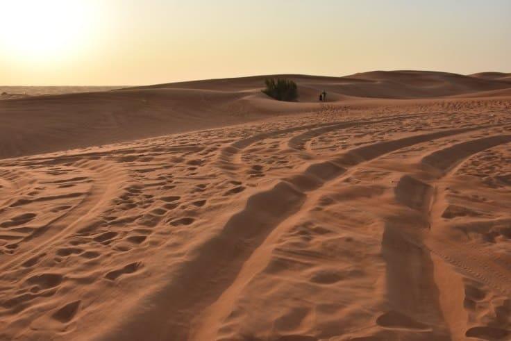Morning Desert Safari Dubai - A new experience